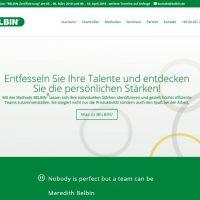 belbin_1